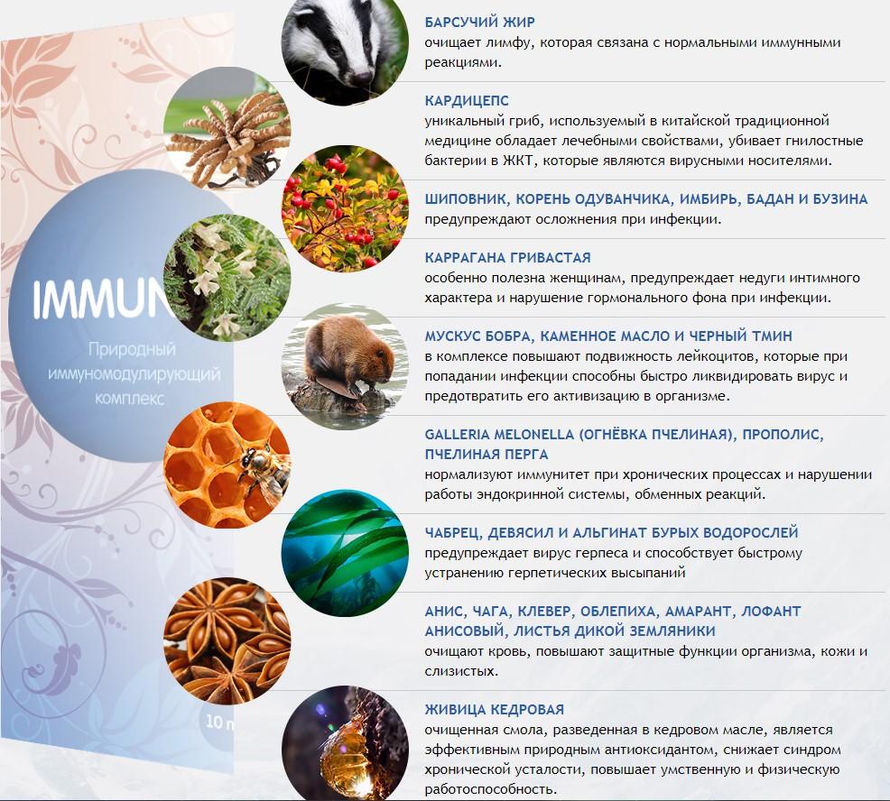 состав иммунити